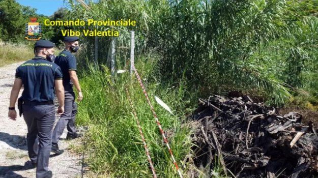 inquinamento ambientale, ricadi, rifiuti, Catanzaro, Cronaca