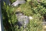 Messina: degrado e rifiuti allo svincolo di San Filippo