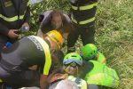 Sta bene l'anziano sparito a Catanzaro venerdì: è stato ritrovato stamattina in zona ss280