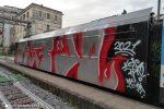 Il vagone delle Ferrovie della Calabria deturpato dai vandali a Catanzaro
