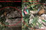 Rifiuti accumulati per settimane nelle aree da risanare a Messina... Il caso del rione Taormina - FOTO