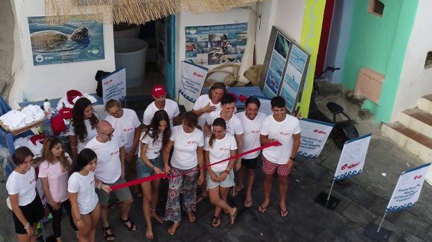 filicudi, isole eolie, pronto soccorso, tartarughe marine, Messina, Cronaca