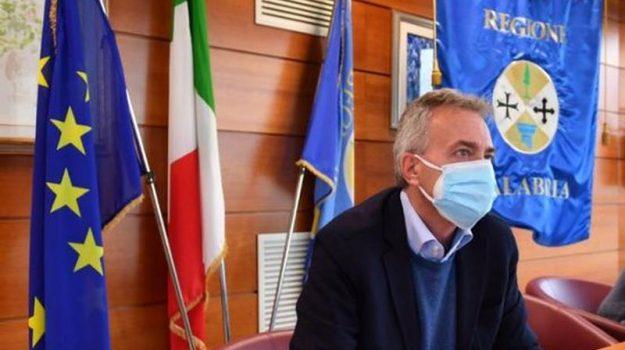 agricoltori calabresi, domanda unica, Gianluca Gallo, Calabria, Cronaca