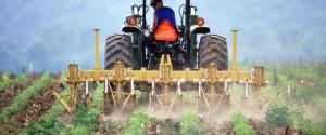 Ismea mette all'asta 43 terreni in Calabria. Bando aperto fino al 7 settembre