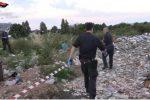 """Lamezia, i rifiuti venivano tracciati con """"formulari irregolari"""""""