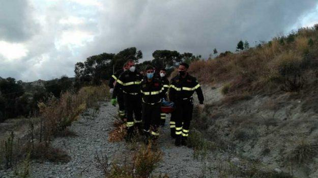 incendio uliveto, morto, ustionato, Carmelo Genovese, Reggio, Cronaca