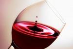 OperaWine e Vinitaly Preview, ripartenza per il vino italiano