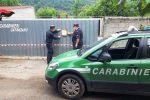 Conflenti, scoperto un deposito irregolare di oltre 70 veicoli: scattano tre denunce