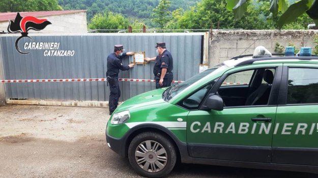 carabinieri, conflenti, mezzi sequestrati, Sicilia, Cronaca