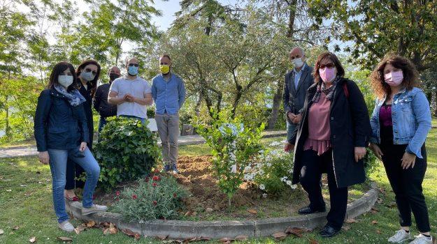 coronavirus, giardino memoria, san marco argentano, Cosenza, Cronaca