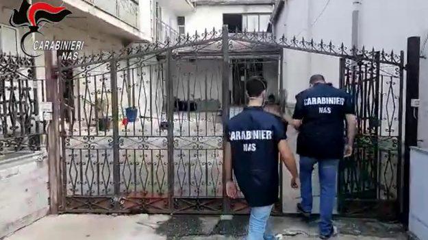 Oppido Mamertina, casa di cura abusiva nella parrocchia. Prete intascava 6mila euro al mese