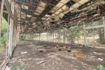 Reggio: Fiera ormai in rovina ma la speranza di rinascita c'è