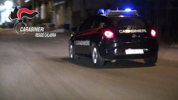 arrestato latitante polacco, gioia tauro, olanda, Reggio, Cronaca