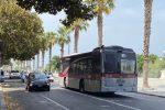 Reggio, isola pedonale: 100 corse gratuite per disinnescare il traffico