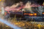 Grosso incendio tra Mongrassano e Bisignano: in fiamme un vivaio FOTO