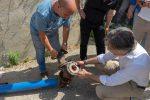 Nuova rete idrica, passi avanti a Reggio