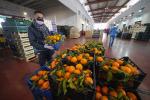 Agroalimentare, in crescita Pil e investimenti