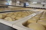 Export, volano i formaggi italiani nel mondo