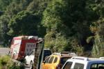 Brucia la dorsale tra Cittanova e Zomaro: in salvo strade e abitazioni