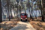 In fiamme la pineta di contrada Fuscolara a Sibari, al lavoro per scongiurare il peggio