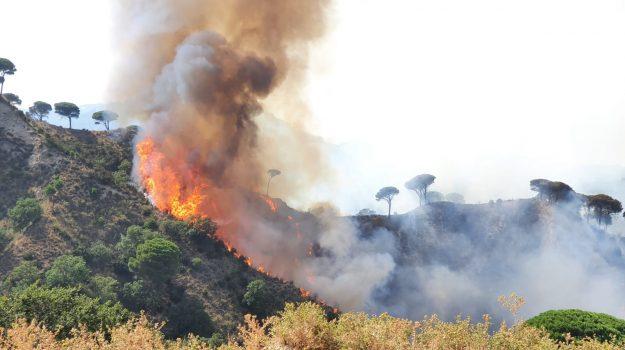 aiuti regioni, incendi sicilia, Sicilia, Cronaca