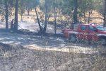 Incendio nella provincia vibonese: in fiamme ettari di terreno