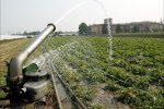 A Reggio la storia si ripete: acqua usata per i campi