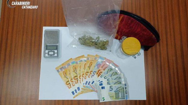 droga, Catanzaro, Cronaca