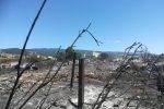 I segni lasciati dal fuoco a Scordovillo di Lamezia Terme