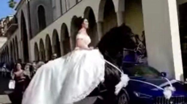 cavallo, palmi, sposa, Reggio, Cronaca