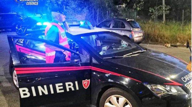 furto, Cosenza, Cronaca