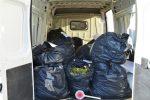 Crotone, quattro arresti per detenzione di sostante stupefacenti. Sequestrati 106,5 kg di marjuana