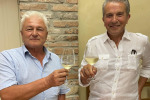 Vino, Sandro Gini riconfermato presidente del Soave