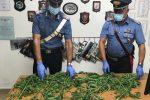 Una piantagione di cannabis scoperta a Librizzi: in manette un 42enne del posto