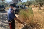 Allacci abusivi alla rete idrica. Tre denunce in provincia di Crotone