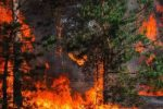Acri, ancora una notte tra le fiamme: il fuoco minaccia il centro storico