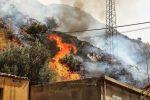 """Reggio, Falcomatà: """"Stato di calamità per gli incendi. I canadair sostino sul territorio"""""""