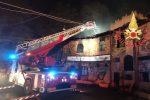 Incendi a Catanzaro, brucia la pineta di Siano VIDEO