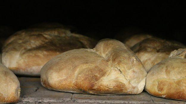 palermo, pane e biscotti, Sicilia, Cronaca
