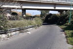 Messina, rifiuti e vegetazione incolta allo svincolo di San Filippo - VIDEO