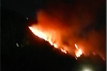 Il mercoledì nero degli incendi in Calabria: due morti nel Reggino. Quattro vittime in una settimana, Spirlì: situazione drammatica