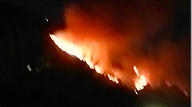 cardeto, due vittime, grotteria, incendi, reggio calabria, Reggio, Cronaca