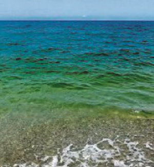 """Lamezia, chiazze marroni e verdastre: il mare """"spaventa"""" i vacanzieri"""