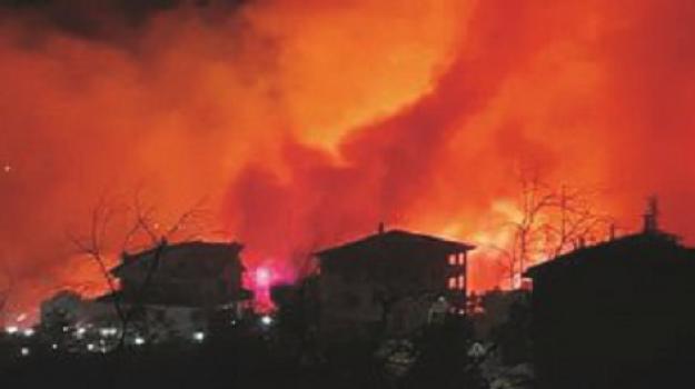 incendi Bisignano, Cosenza, Cronaca