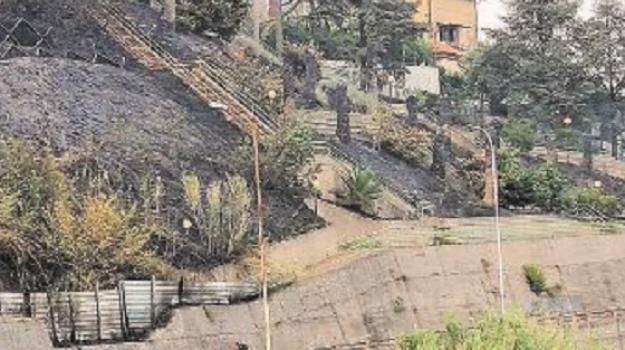 centro storico, incendi, rende, Marcello Manna, Cosenza, Cronaca