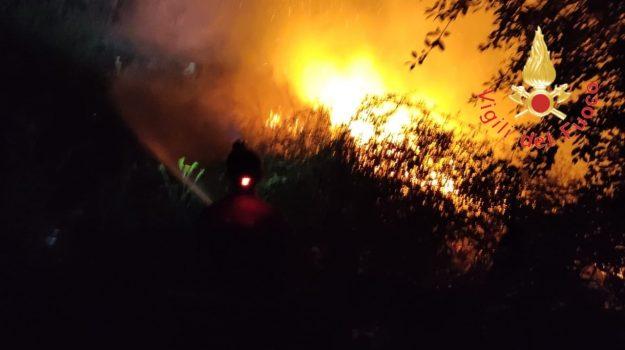 incendi, provincia Catanzarese, sorbo san basile, Catanzaro, Cronaca