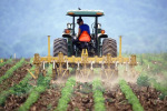 Concluso censimento generale agricoltura, risposte da 83% aziende