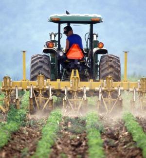 """Agricoltura Calabria, Parentela (M5S): """"In arrivo 350 milioni del Pnrr per una migliore gestione delle risorse idriche"""""""
