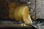 Consorzio Parmigiano Reggiano a Cibus all'insegna della biodiversità