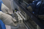 Covid, studio su anticorpi monoclonali tetravalenti contro il virus